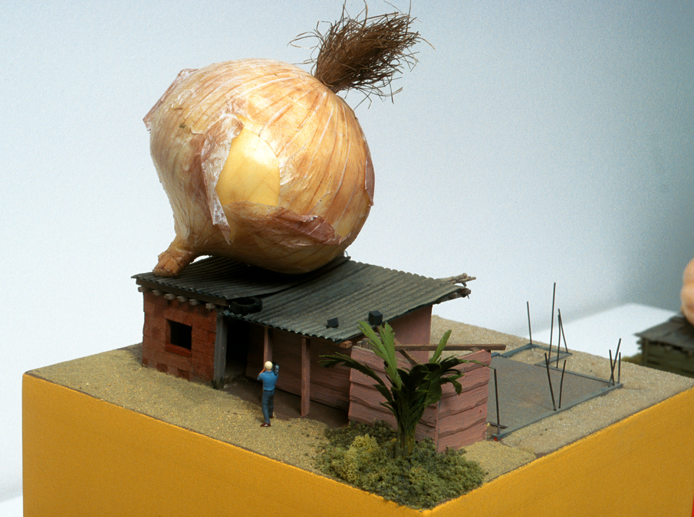 Structuralist study of poverty (onion)  copy.jpg