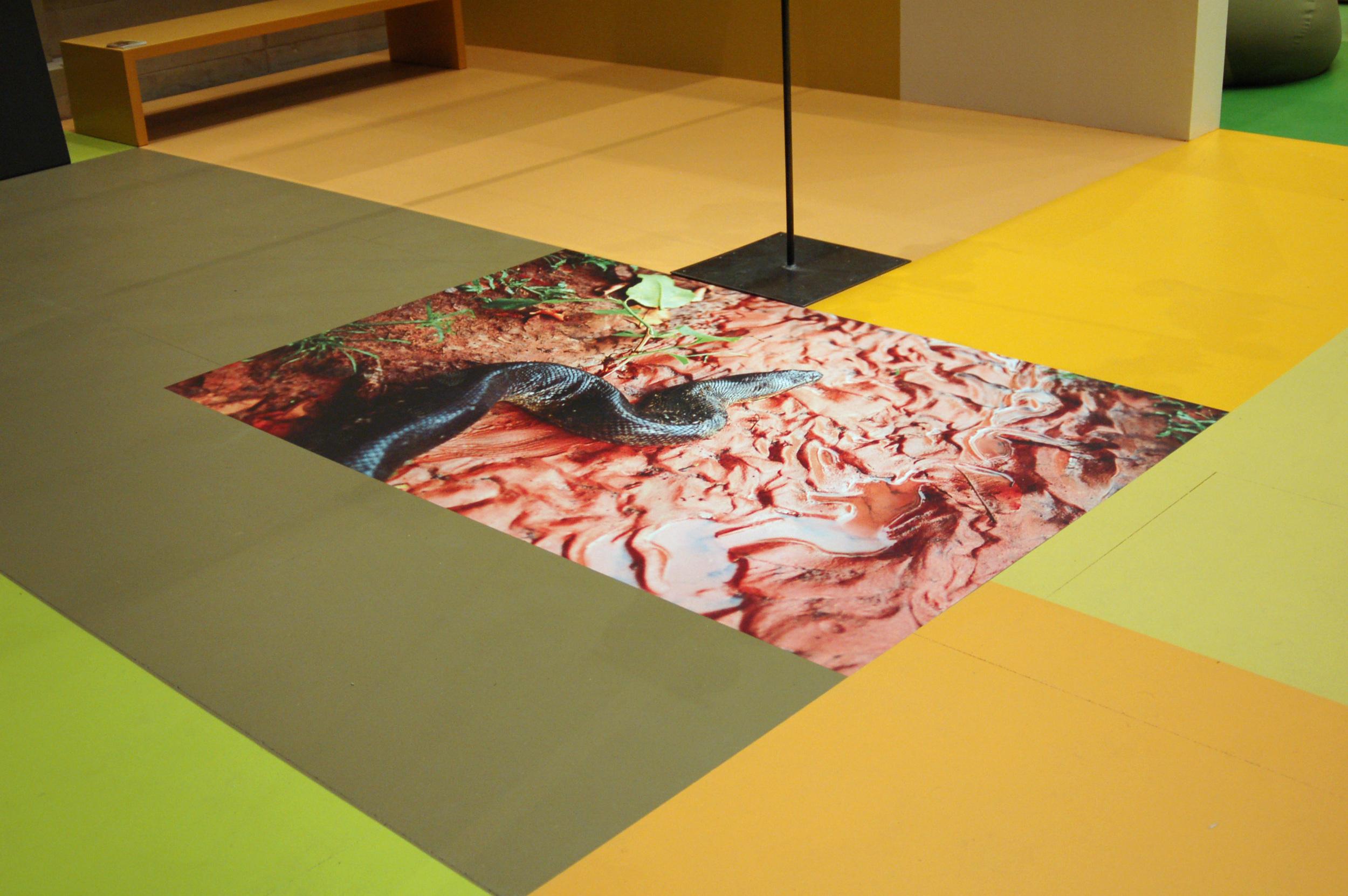 snake floor Munster.jpg