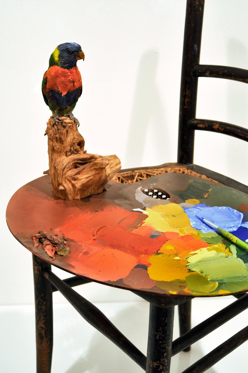 Courbet's-parrot-side-view-establishing+.jpg