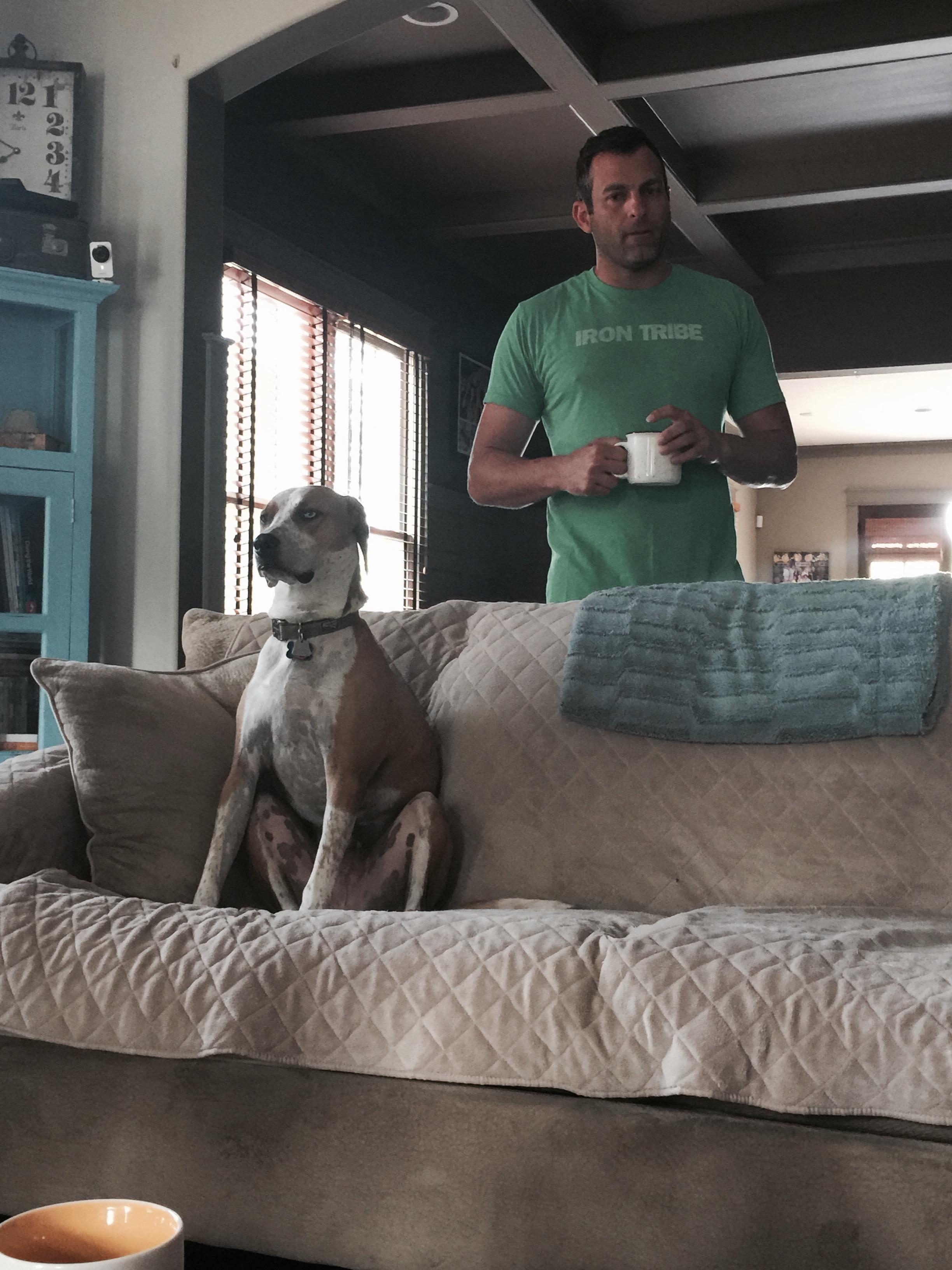 Blu & Norm - Keeping an eye on things!
