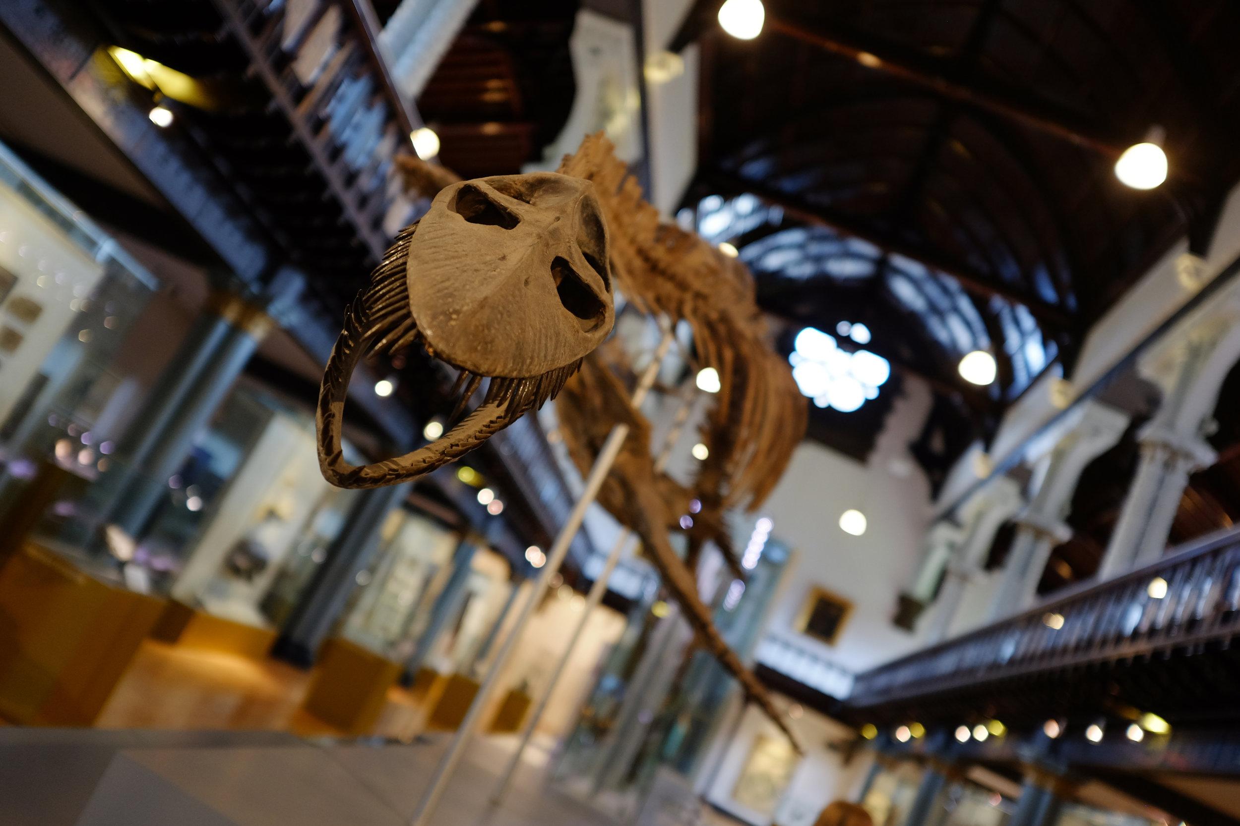 Hunterian Art Gallery | Glasgow, Scotland