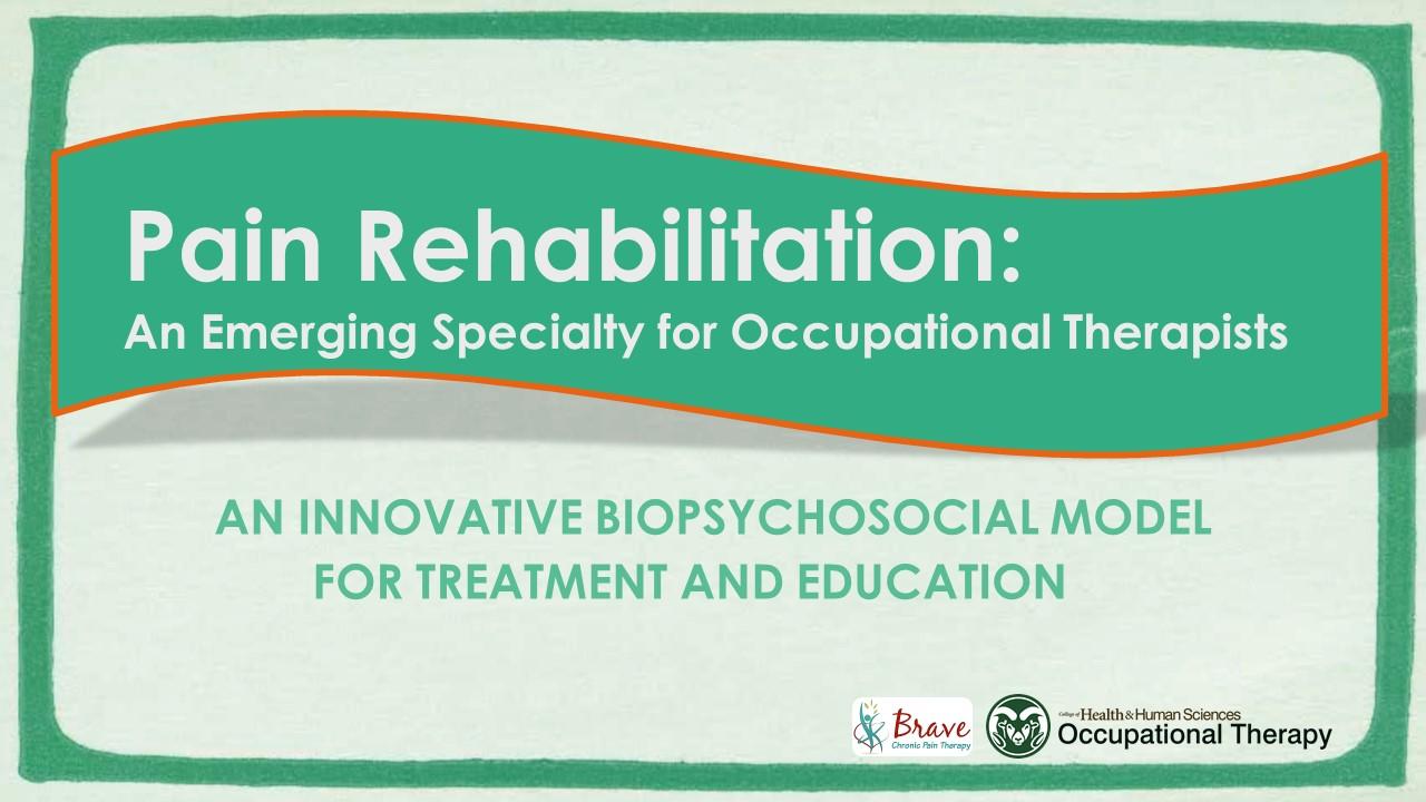 AOTA Pain Rehabilitation Institute Presentation FINAL.jpg