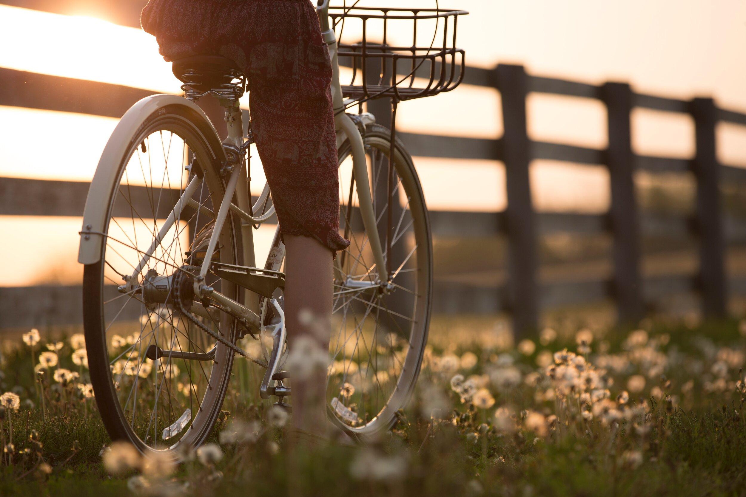 bicycle-biker-biking-1548771.jpg
