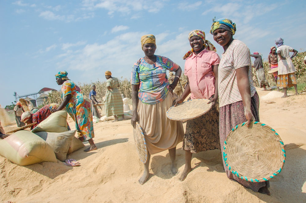 Esther (center) works alongside Martha (right) to sift chenga (broken rice) in Doko.