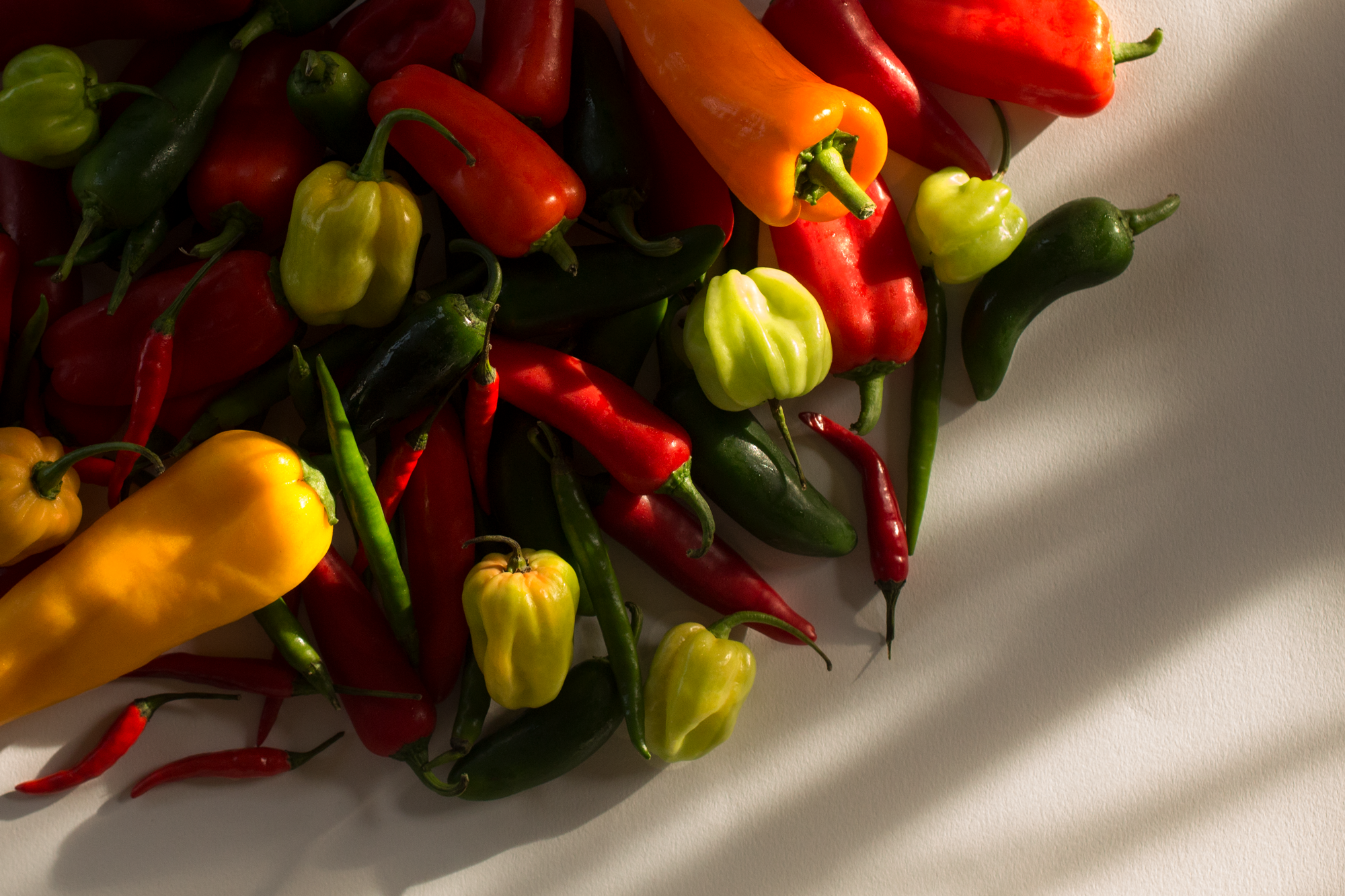 PEPPERS-2.png