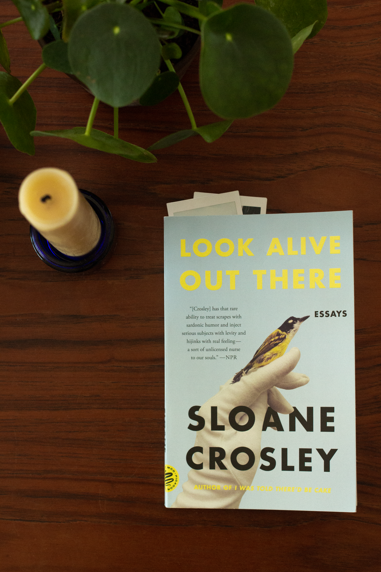 Look-Alive-Out-There by Sloane Crosley.png