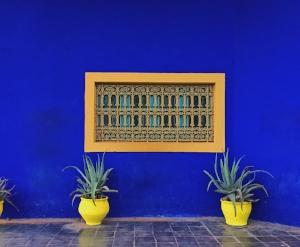 architectural-design-majorelle-garden-marrakesh-592596.jpg