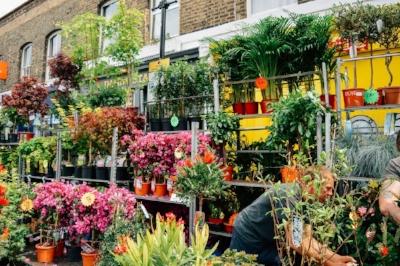 Columbia+Road+Flower+Stall.jpeg