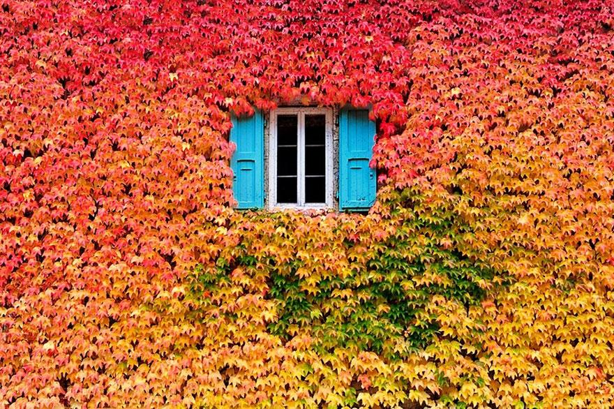 autumn-photography-2-2__880.jpg