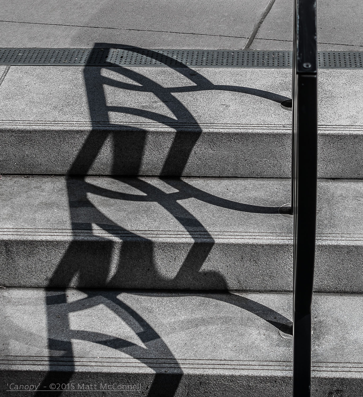 'Canopy'-©2015 Matt McConnell-6.jpg