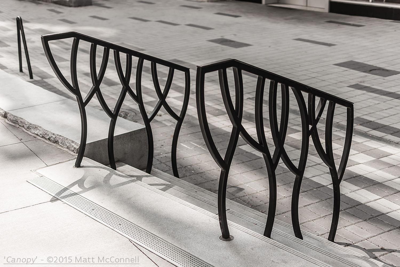'Canopy'-©2015 Matt McConnell-8.jpg