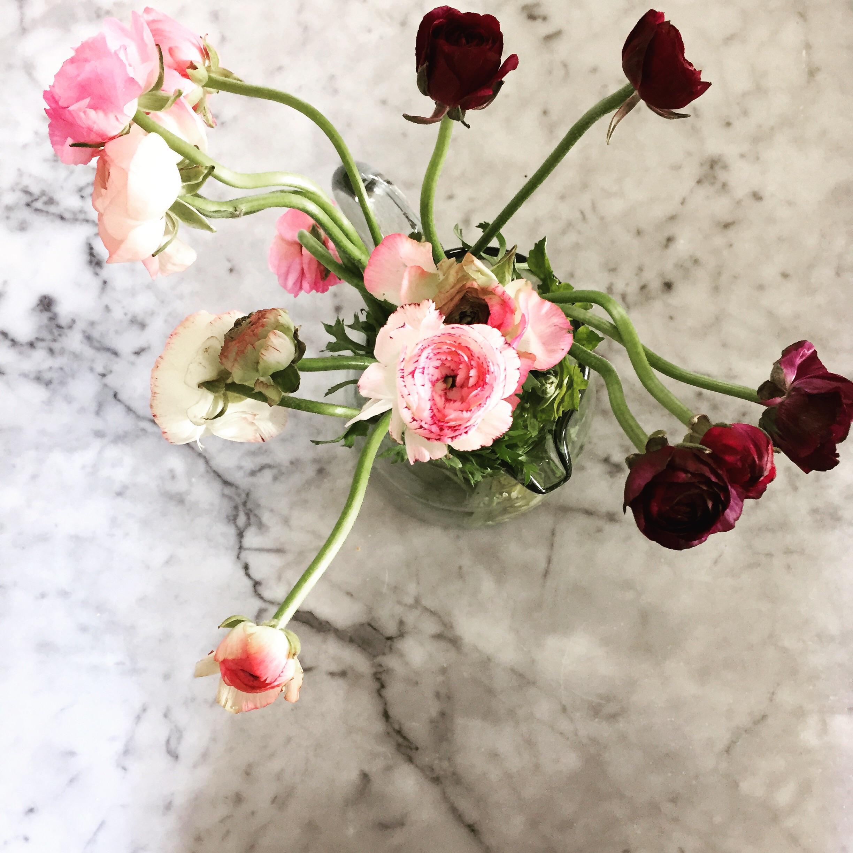 Sone pretty petals to brighten up our day