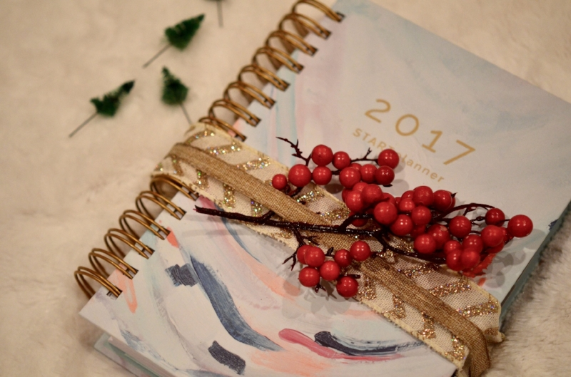 Start Hustle Daily Planner 2017 Lilies and Lambs