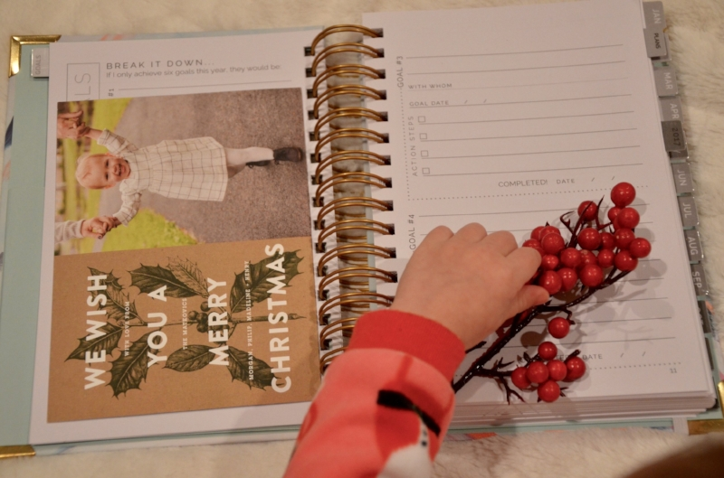 Start Planner Lilies and Lambs 2.jpg