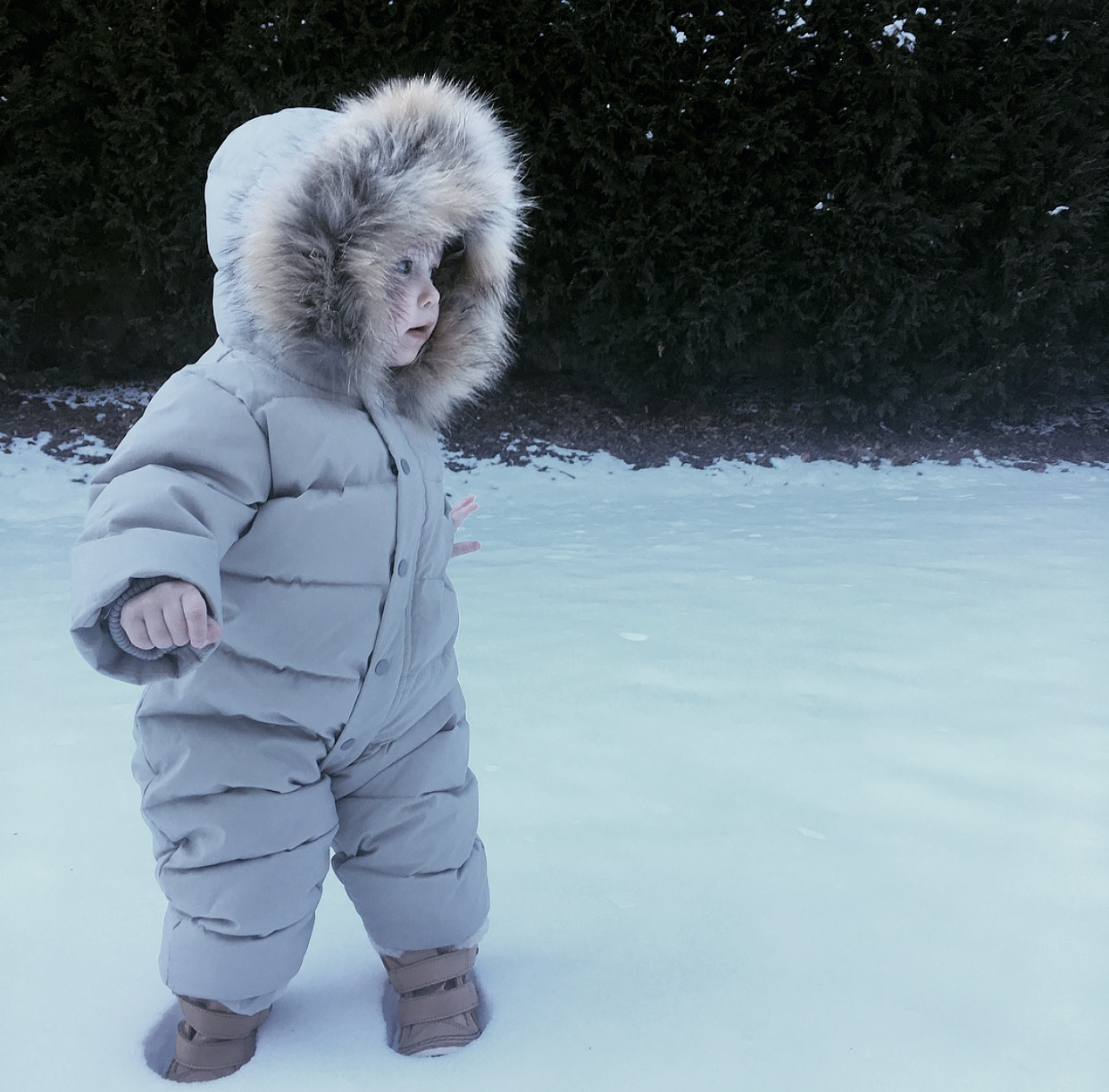 Lilies and Lambs Bonpoint Snow Suit