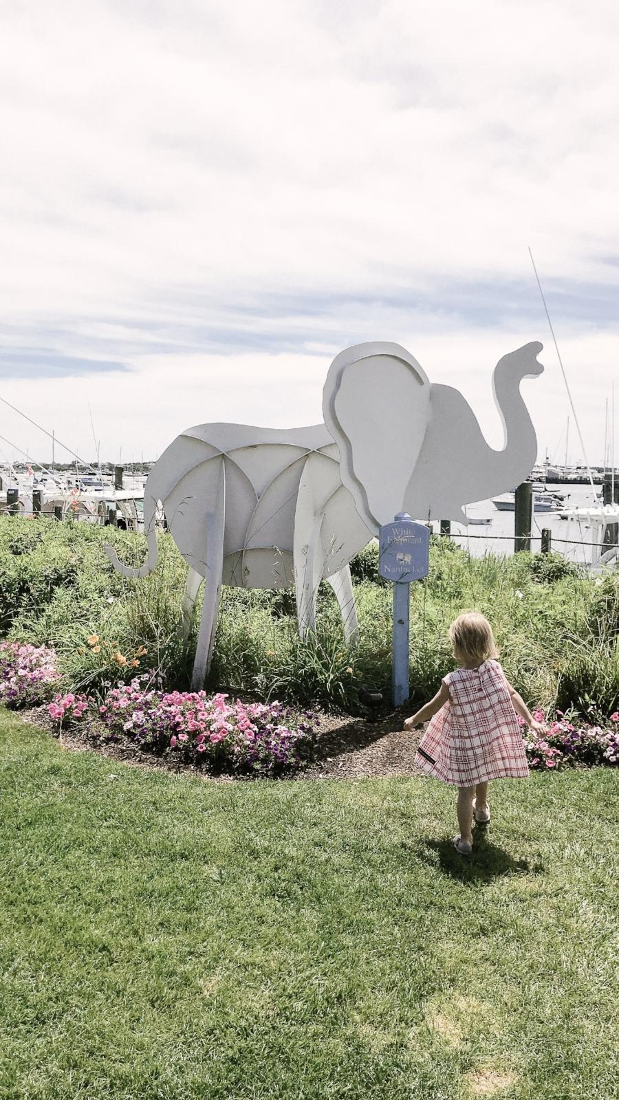 Nantucket Lilies and Lambs