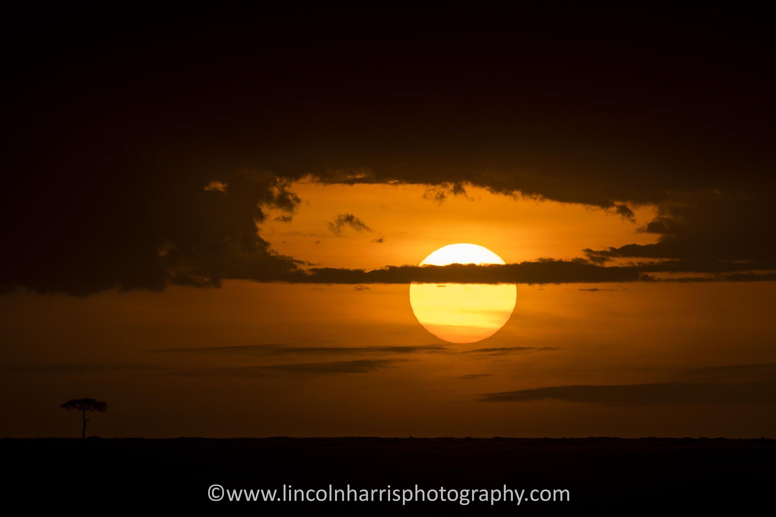 Split Sunset.jpg