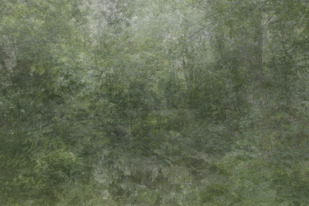 Kim Boske,  I Go Walking in Your Landscape