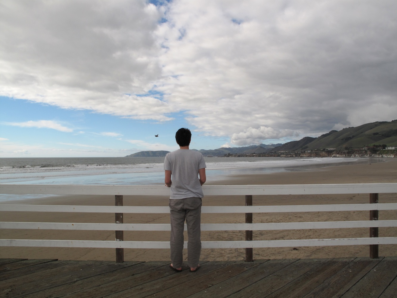 David Horvitz, Public Access (Pismo Beach) , 2011-2014