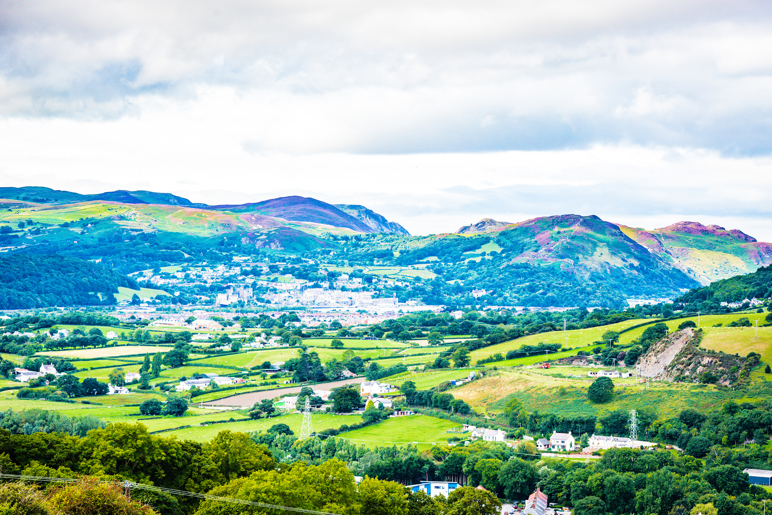 One of the views from Welsh Mountain Zoo