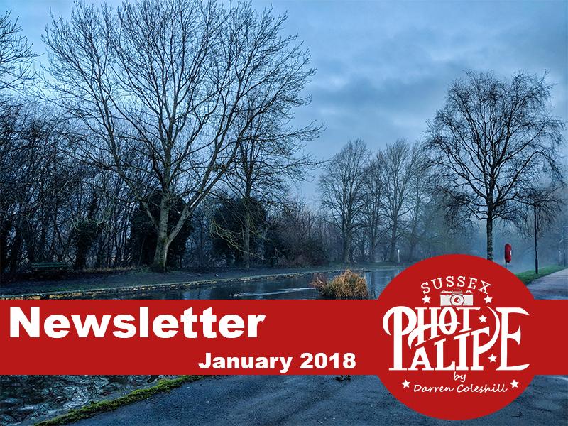 Newsletter Header jan.jpg