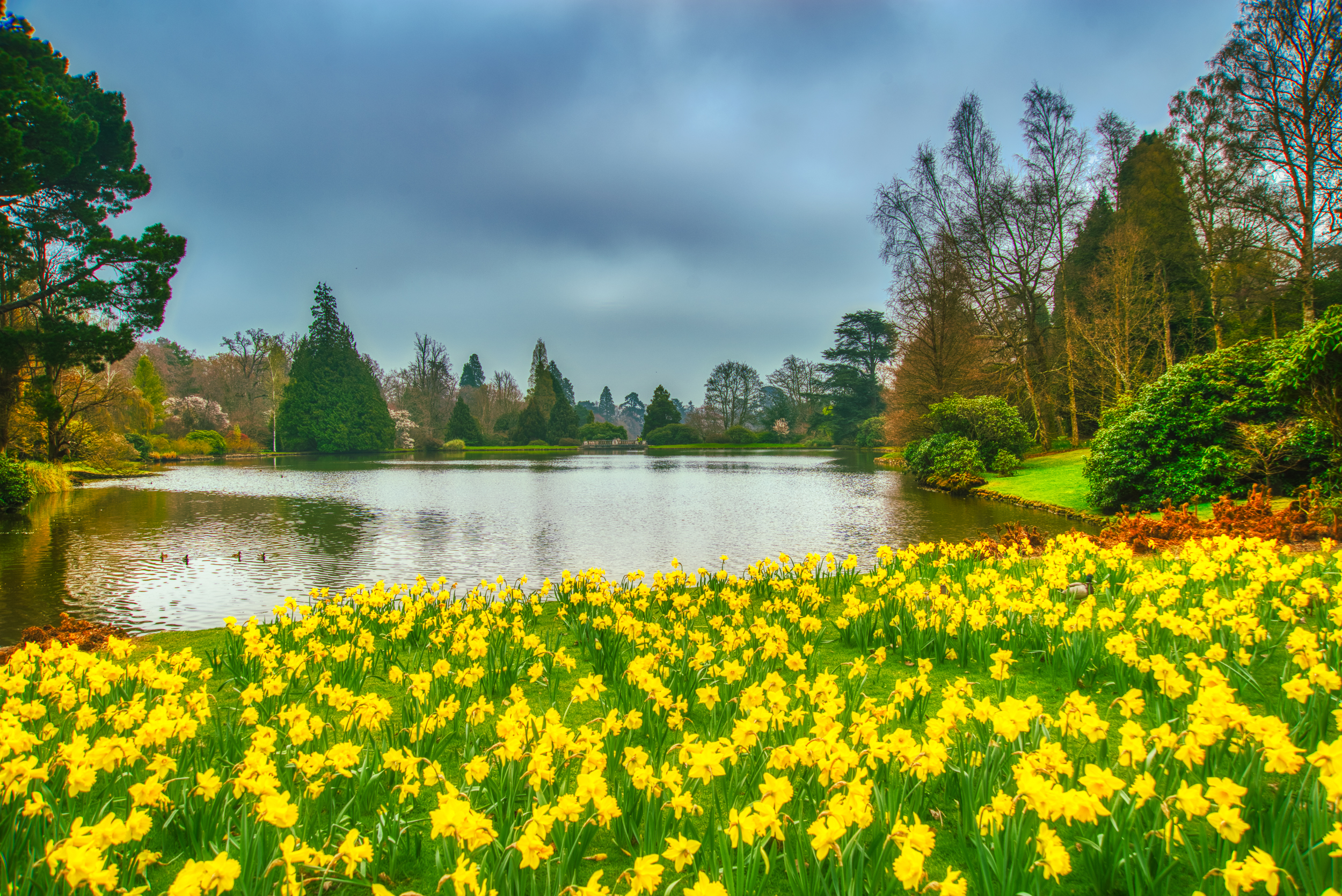 All the Colours of Spring    📷 PHOTO INFORMATION    DATE TAKEN  2019-04-07 10:30:29   CAMERA  D610   CAMERA MAKE  NIKON   EXPOSURE TIME  1/200   APERTURE  F/8   ISO  100   FOCAL LENGTH  24MM
