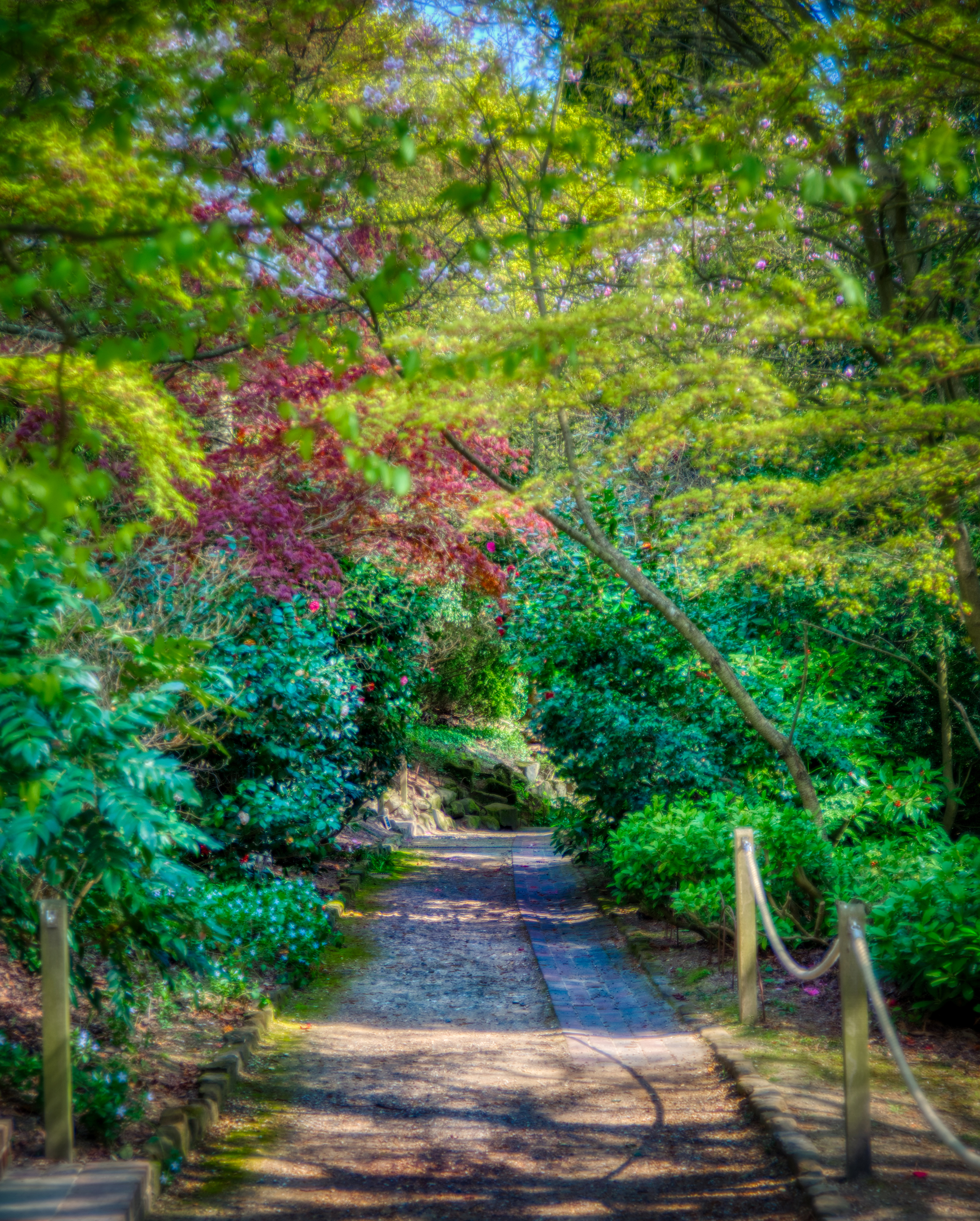 Standen House Walkway    📷 PHOTO INFORMATION    DATE TAKEN  2019-04-15 11:32:25   CAMERA  D610   CAMERA MAKE  NIKON   EXPOSURE TIME  1/320   APERTURE  F/3.8   ISO  200   FOCAL LENGTH  62MM