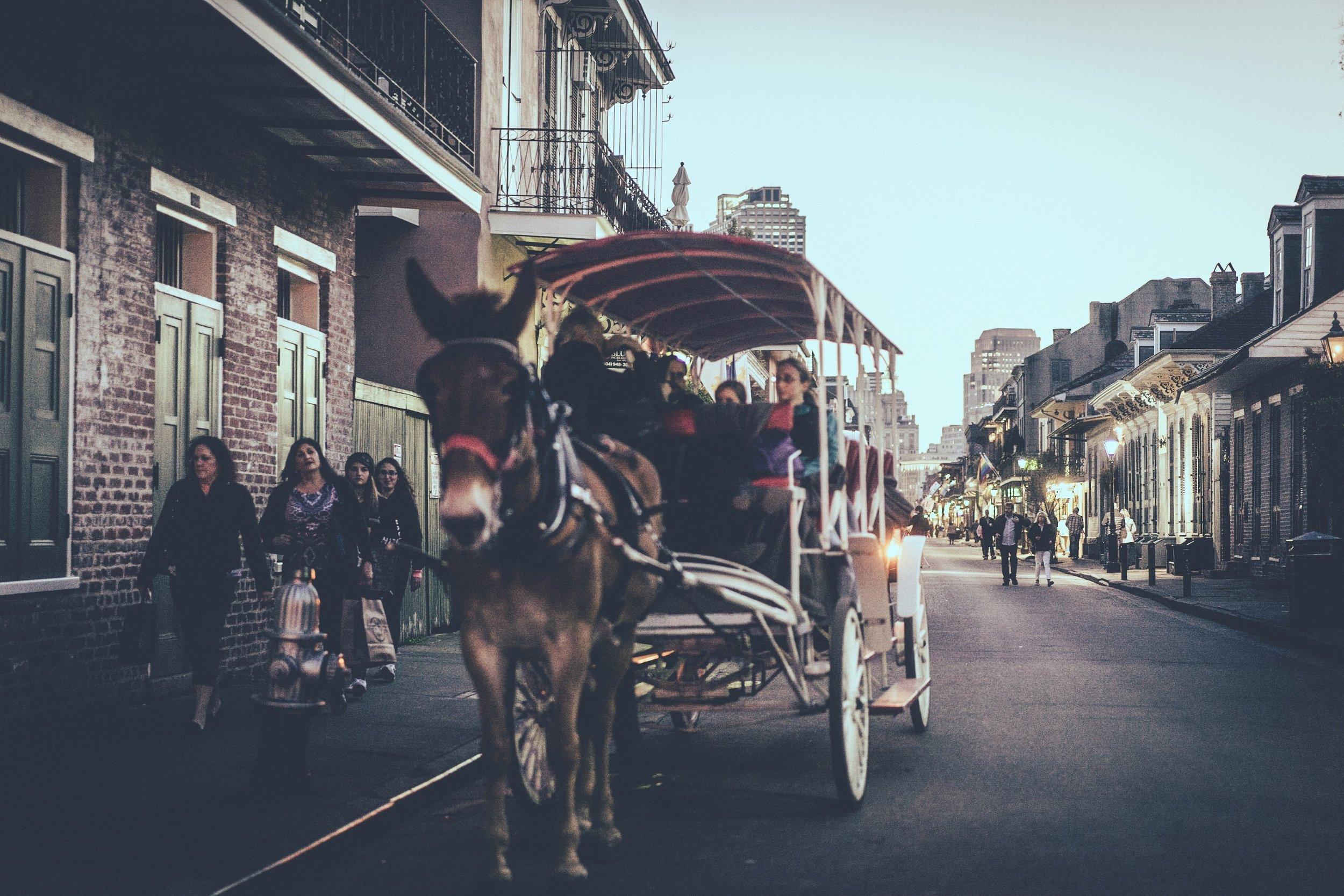 Riding shotgun in New Orleans