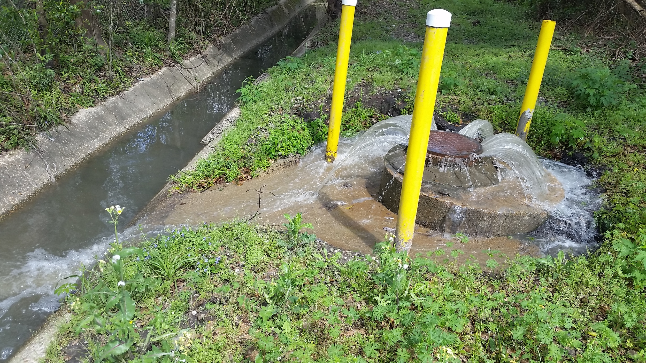 A sanitary sewer overflows near Three Mile Creek in Mobile.