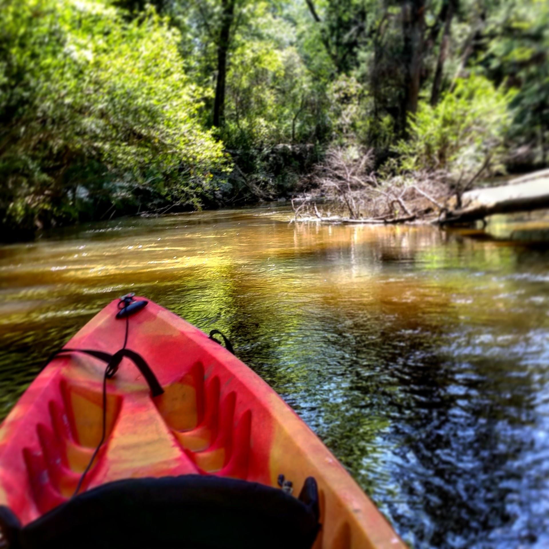 A kayaker paddles down Fish River.