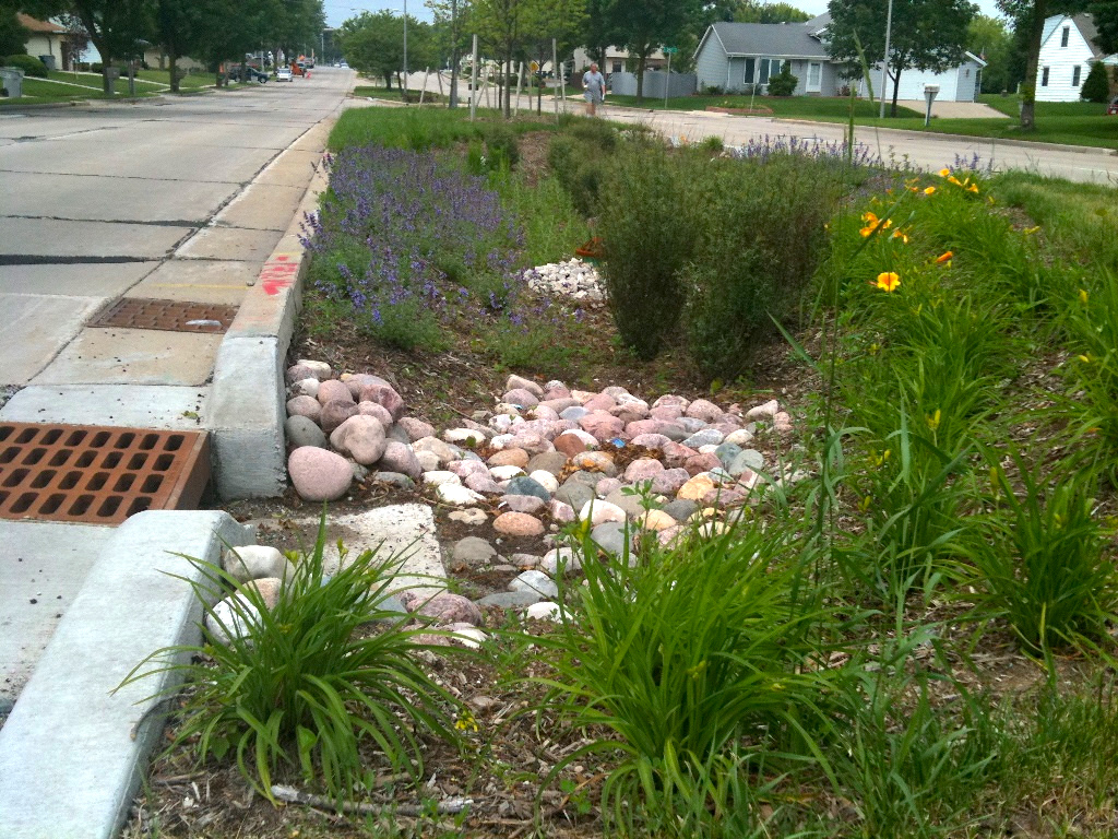An example of combating flooding and stormwater pollution with green infrastructure in Milwaukee, WI  Photo - Aaron Volkening