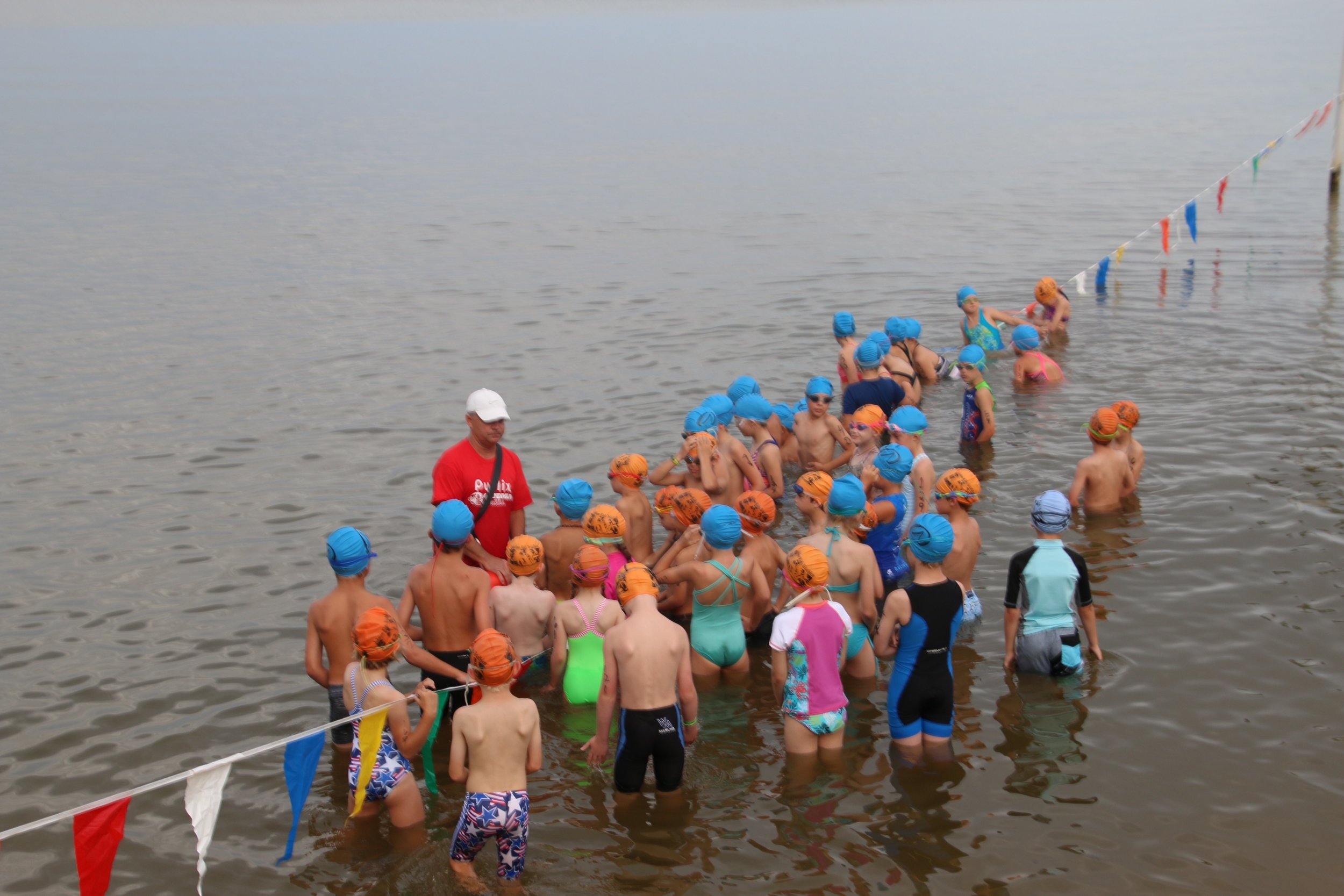 Swim Lineup 3.jpg
