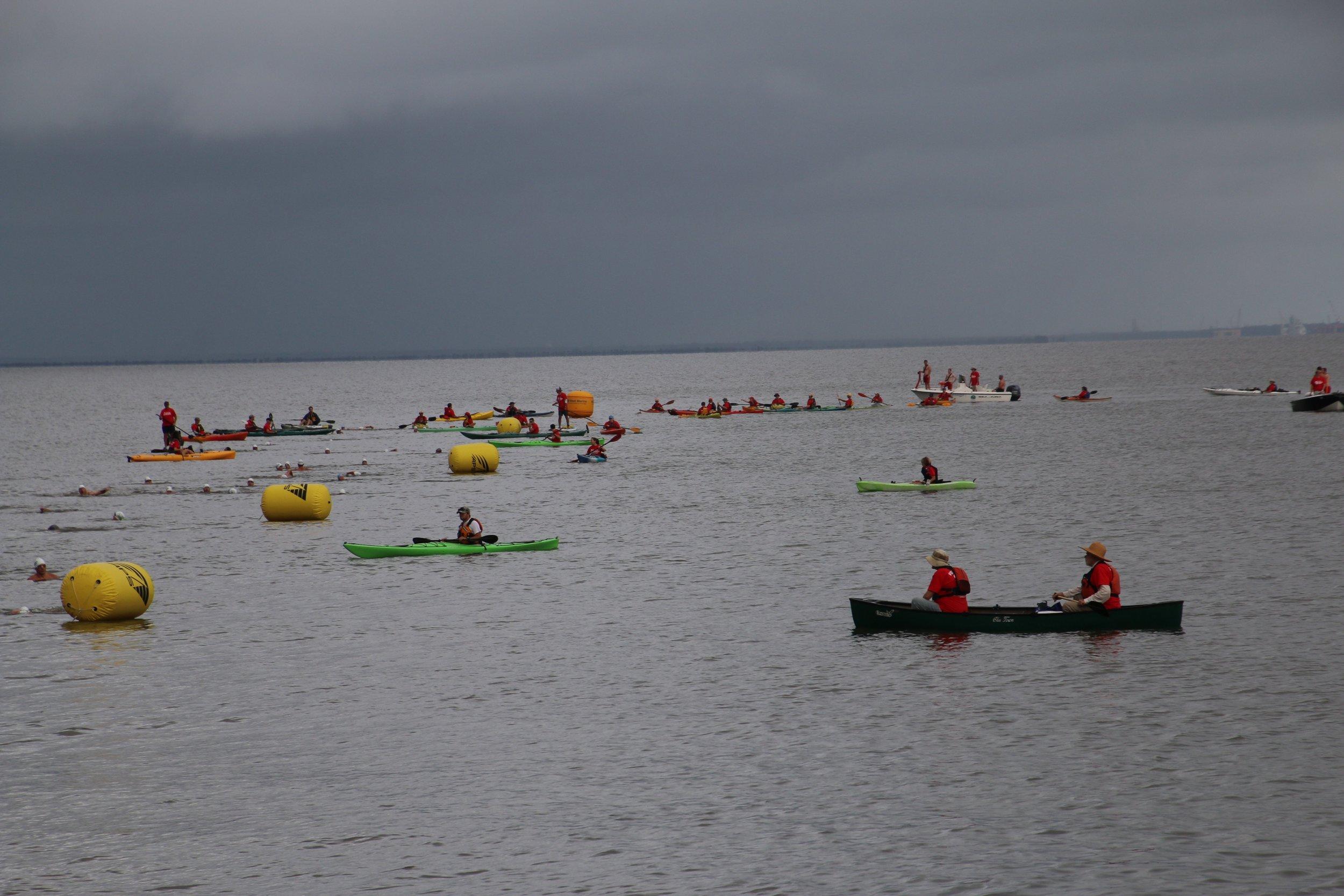 Kayaks 5.jpg