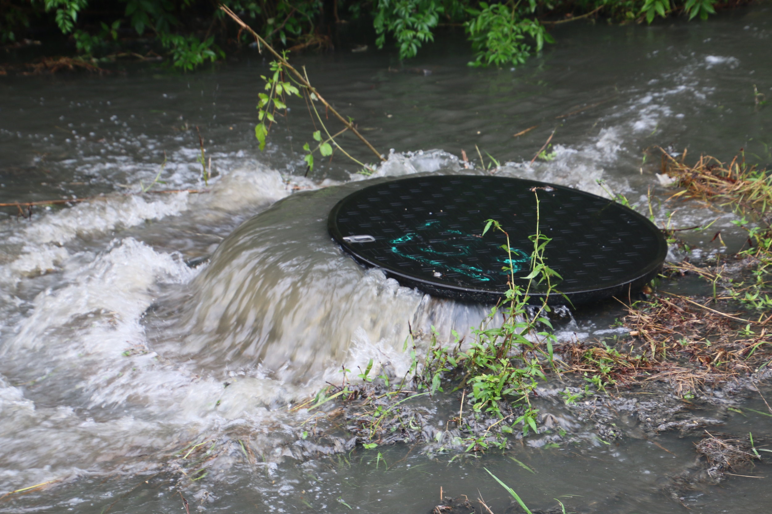 Above: Sewage spills from a manhole into Bolton Branch in Mobile.