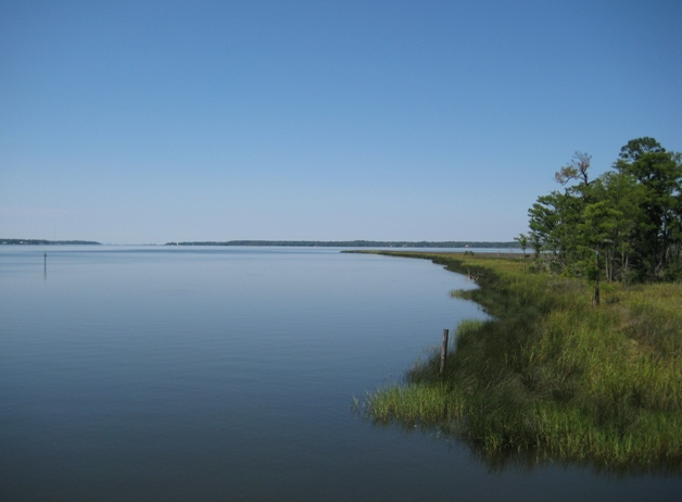 Fairhope students will have the opportunity to utilize the Weeks Bay Reserve during the school year to connect concepts learned in the classroom to the field.