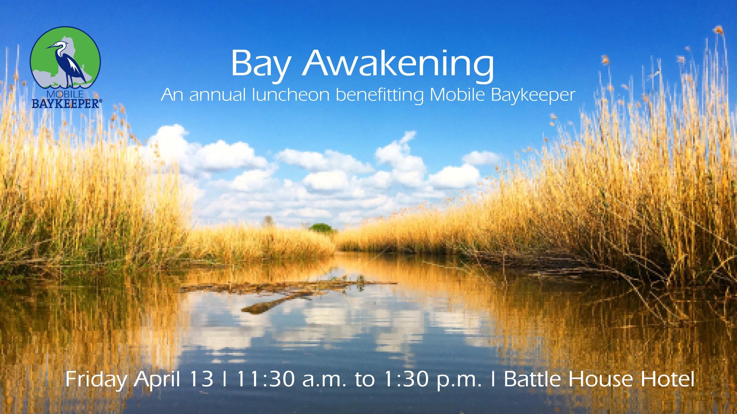 Bay Awakening Cover Photo.jpg