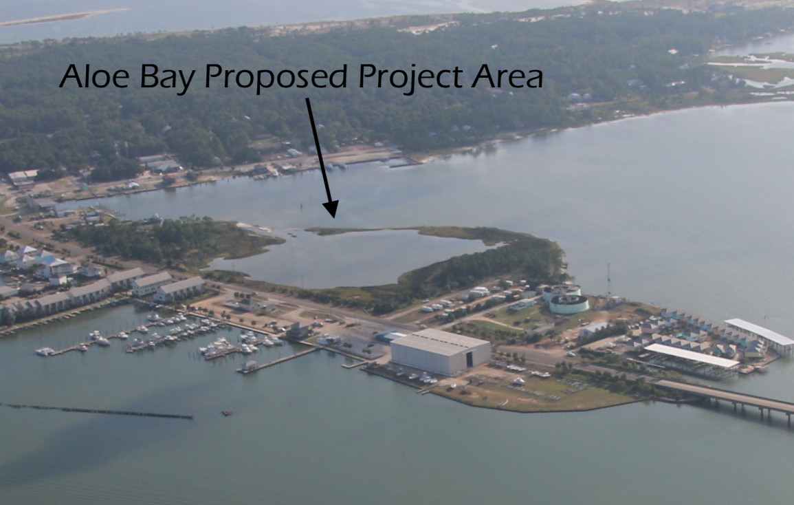 The planned development would put condos, 180+ boat slips, a parking lot, and a marina on top of the current undeveloped wetlands and water bottoms at the entrance to the island.  Photo by Cade Kistler Flight Provided by    Southwings   .