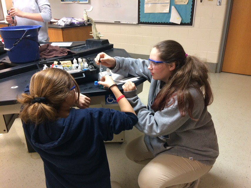 Citronelle High School tudents train to become water quality monitors.