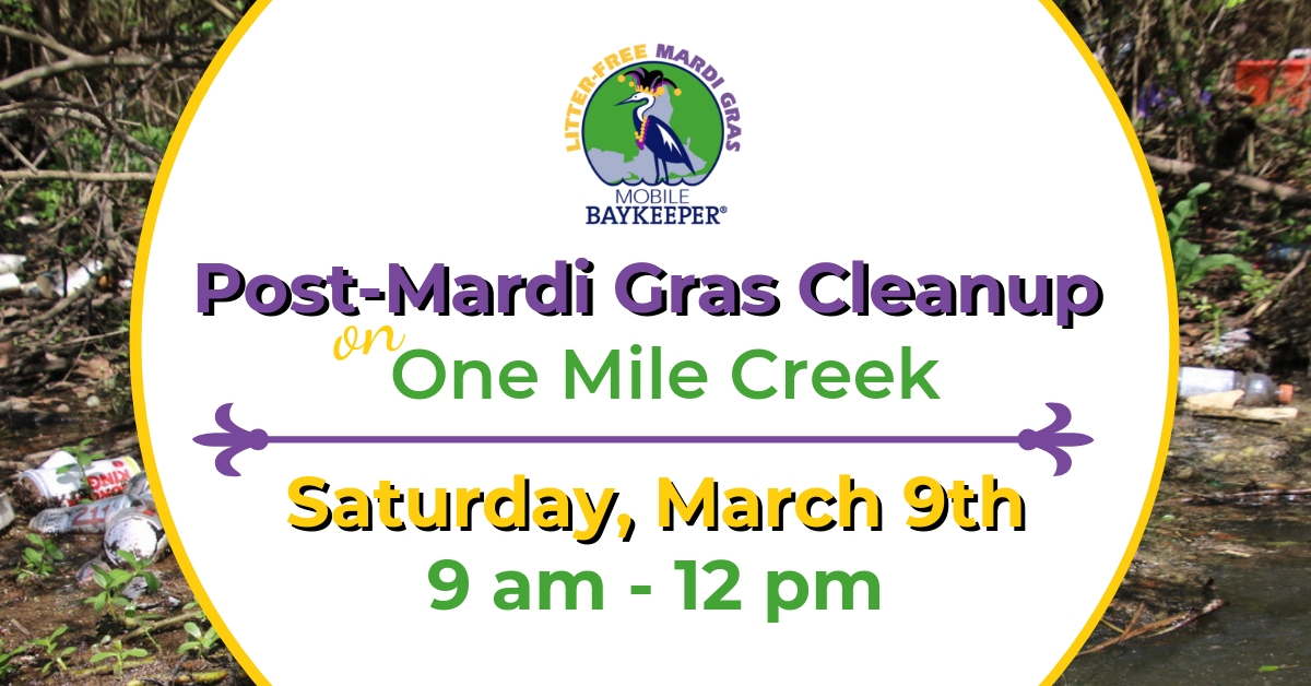 Post-Mardi Gras Cleanup on One Mile Creek.jpg