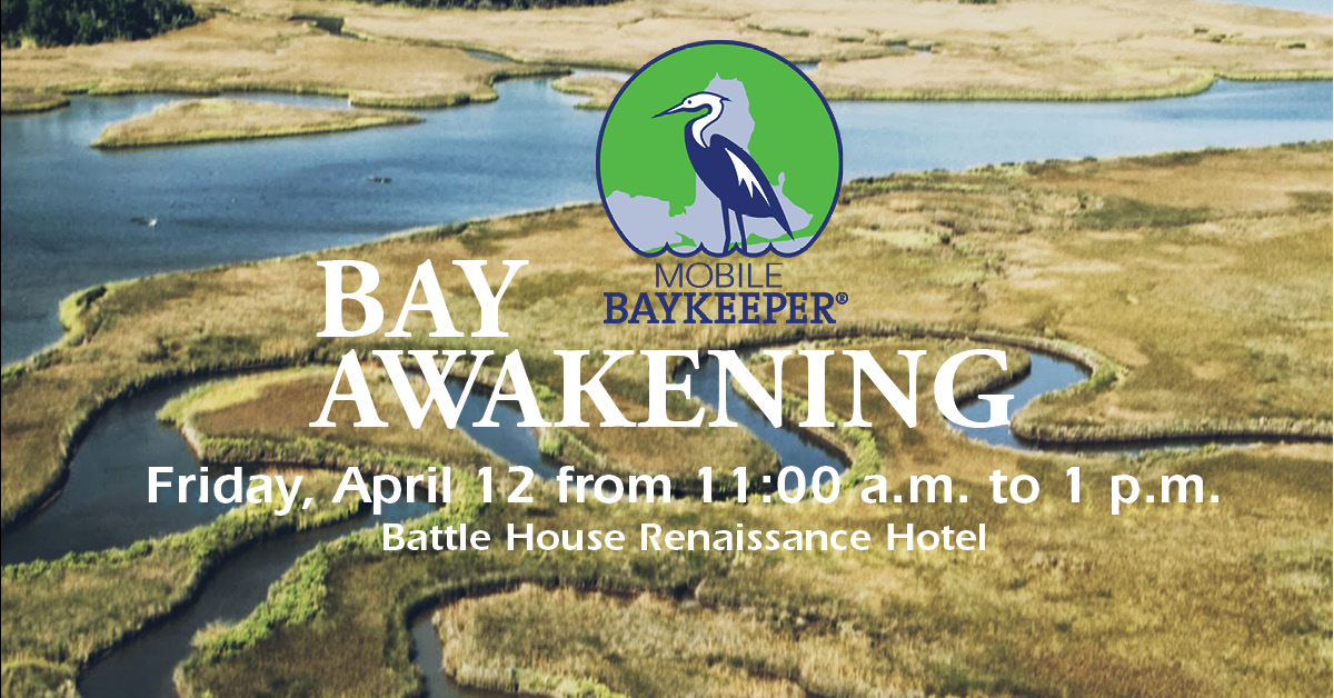 Bay Awakening Cover Photo Draft.jpg