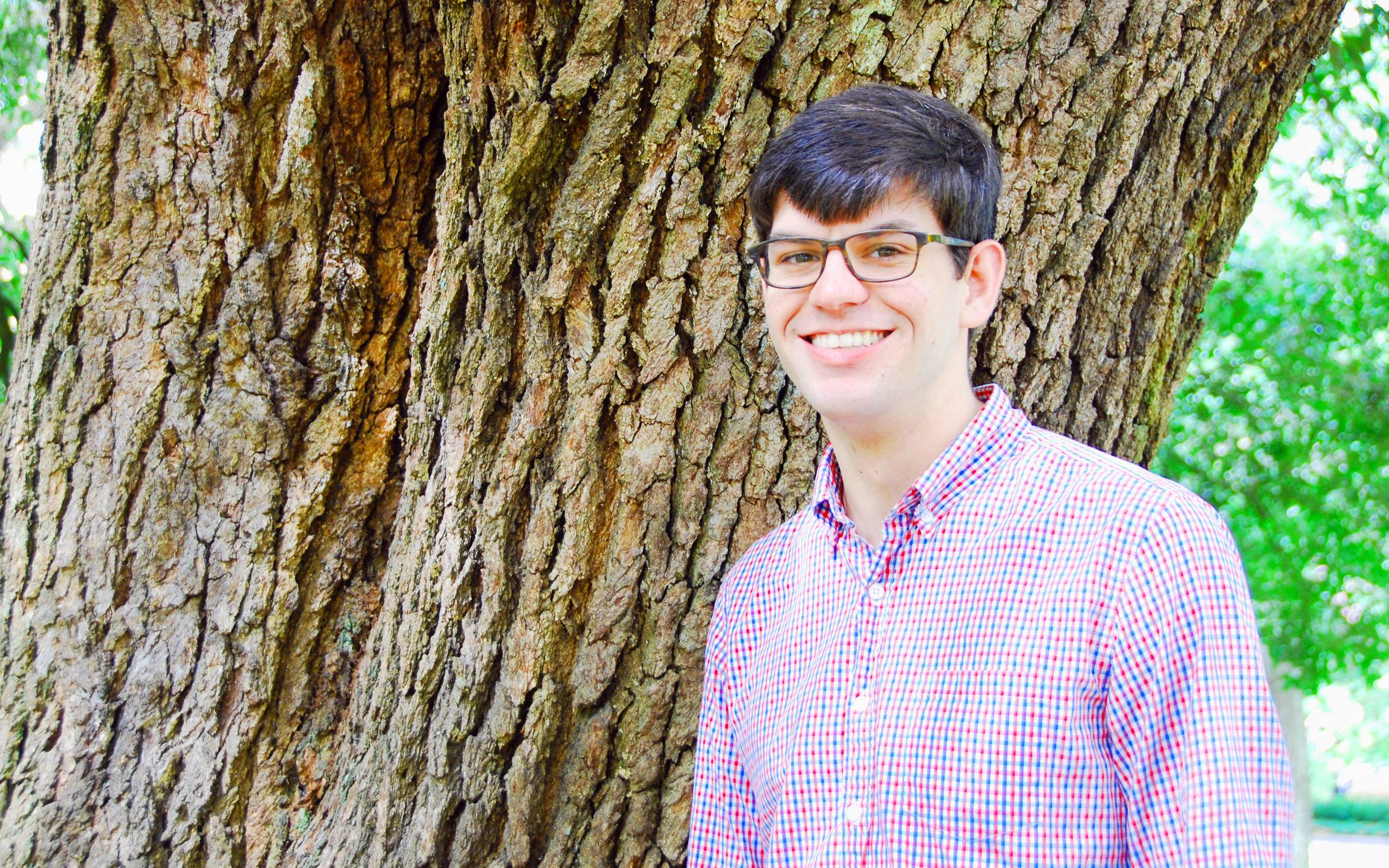 Owen tree.JPG