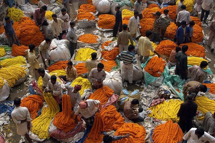 Kolkata Flower Market. Image Courtesy of Parasarathi Mukherjee, Walks in Kolkata.