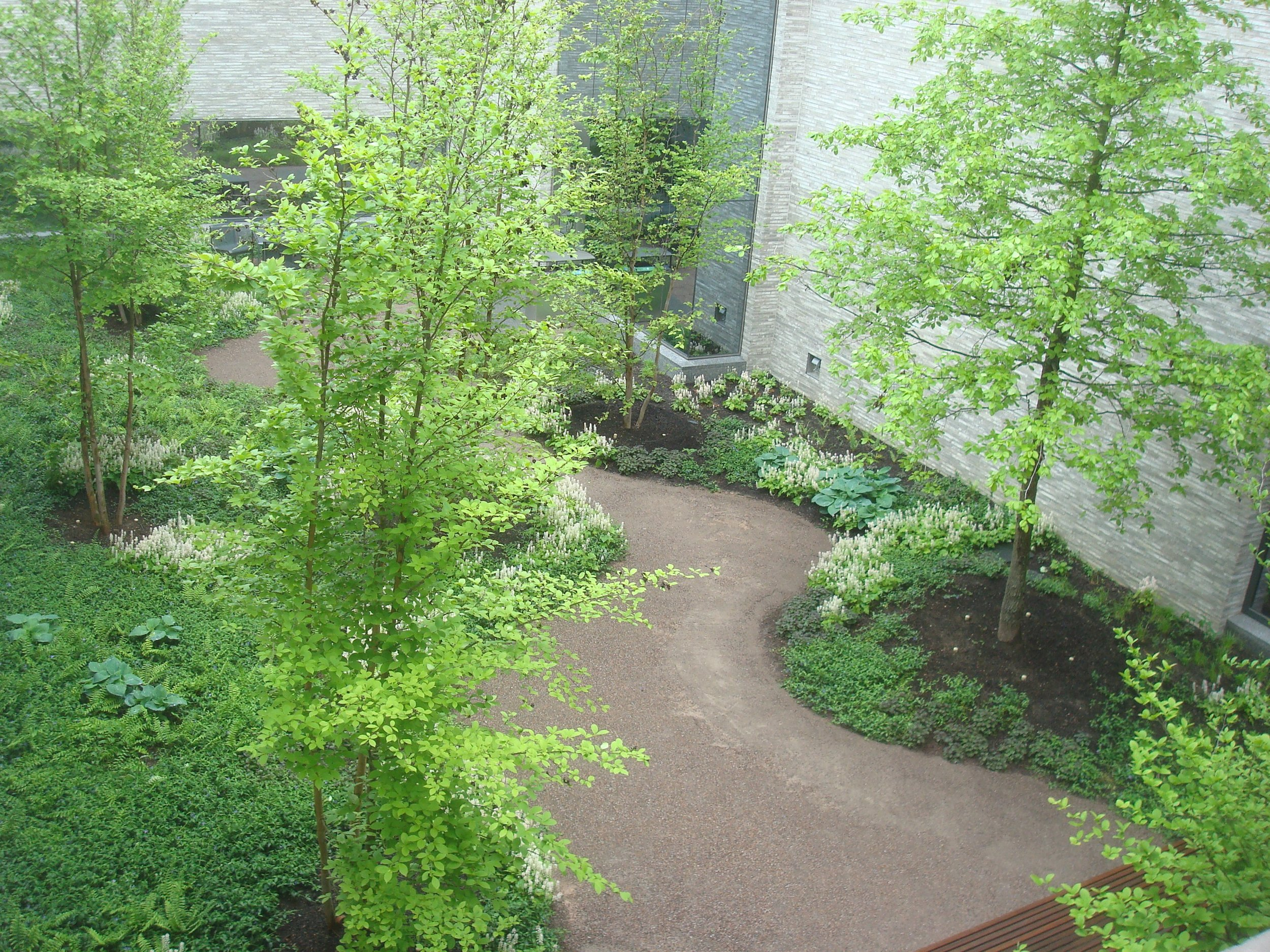 Interior courtyard of the Andlinger Center, with walking path.