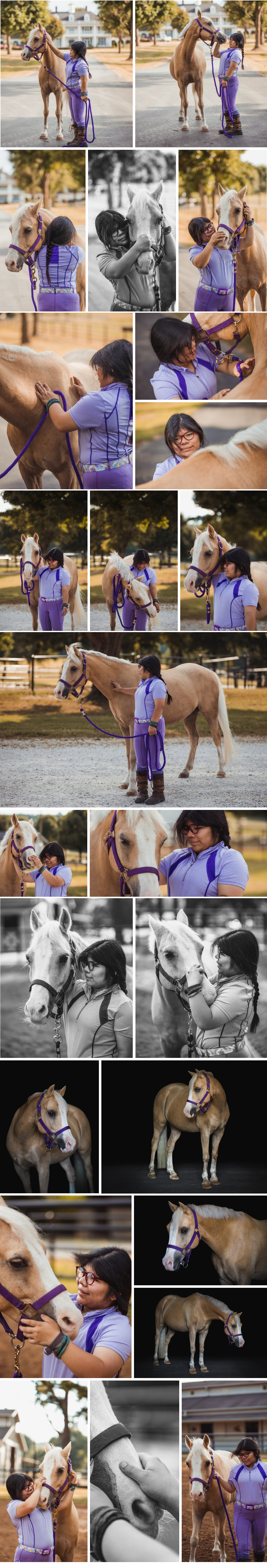 horse photography in NWA and Arkansas