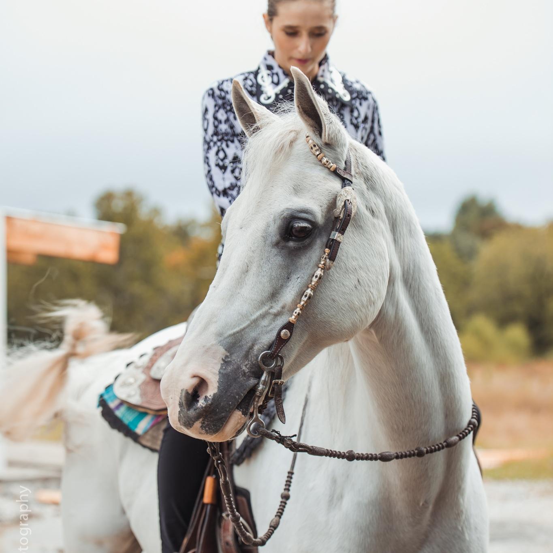 ANWARC // Open Horse Show - October 6, 2019
