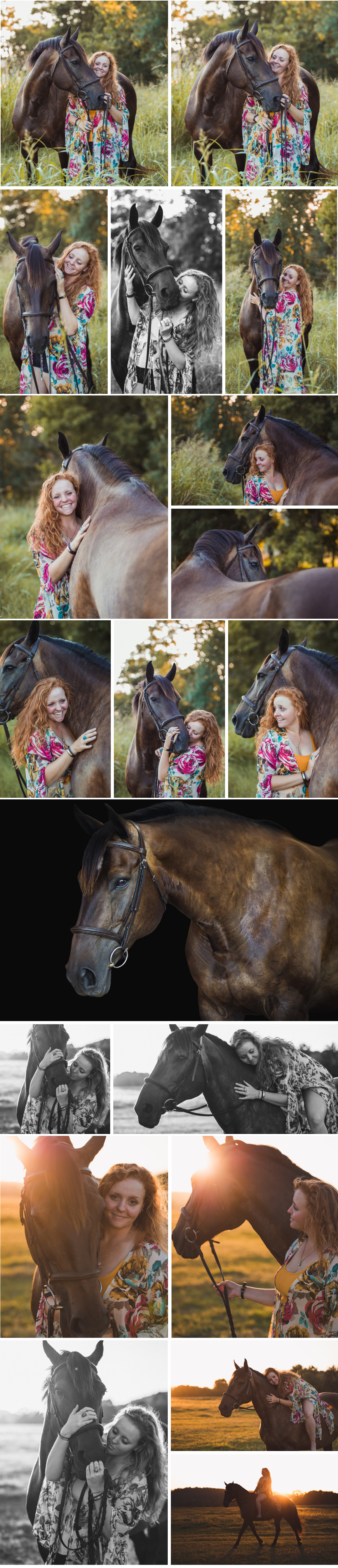 Equine photography in Fayetteville Arkansas, horse photography