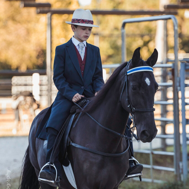 ANWARC // Gaited Horse Show - October 12, 2019