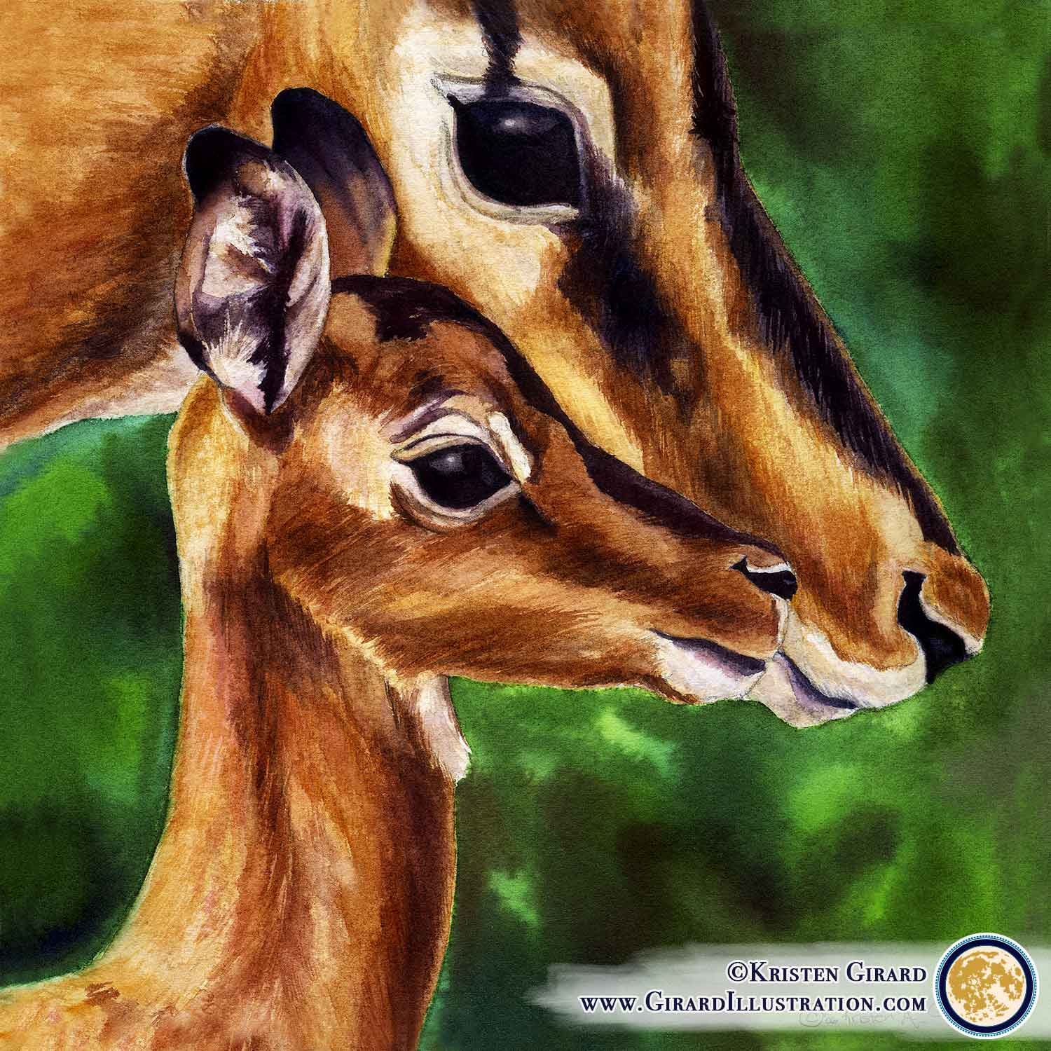 Mother Impala Doe and Fawn