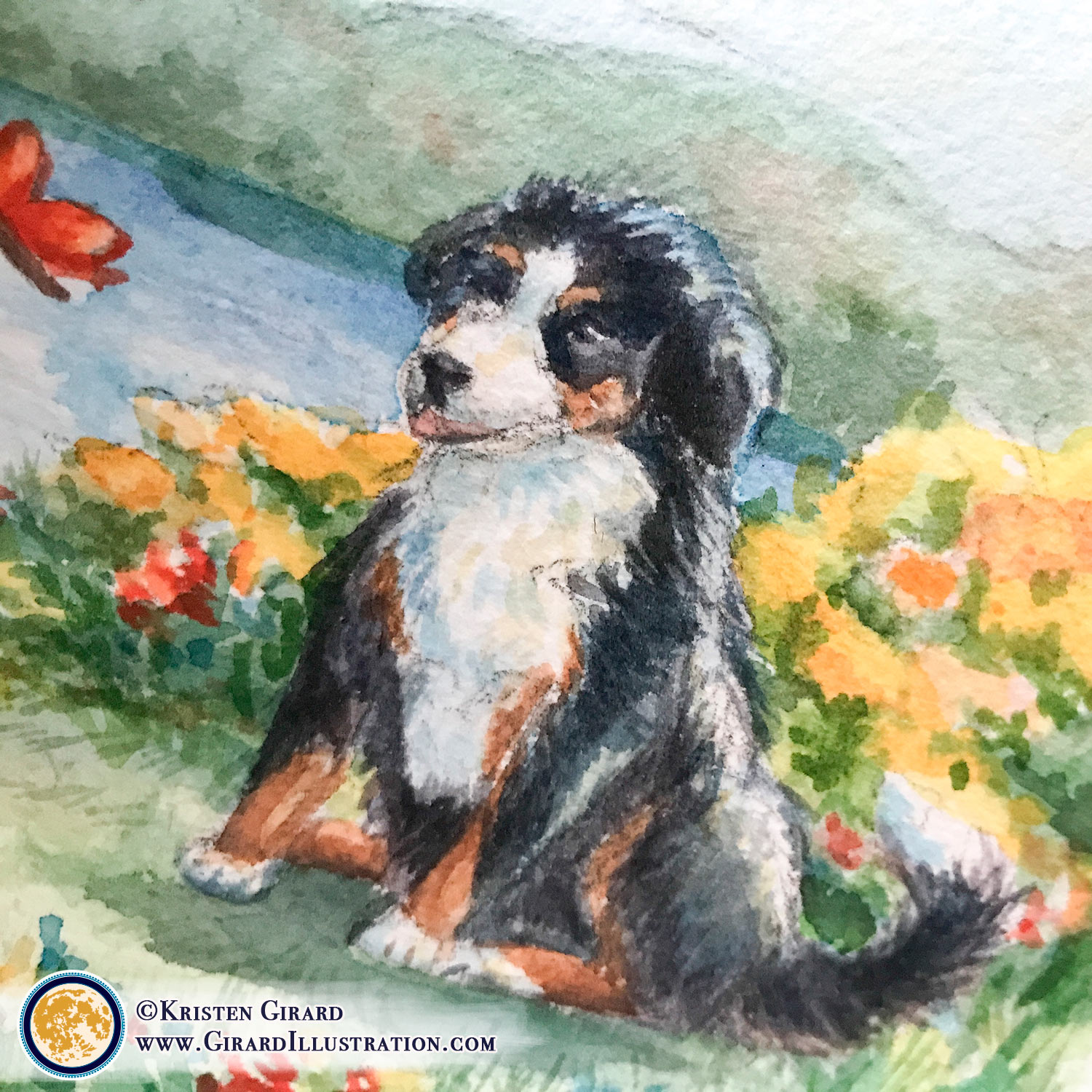 This is Riggins.  He had the honor of being the ring bearer for his people, Emily and Lee, at their wedding celebration in Lake Placid, NY in the Adirondack Park. To commemorate the wedding day Riggins the Bernece Mountain dog was included on the custom illustrated certificate of marriage created as a watercolor painting by Kristen Girard.  © Kristen Girard at Girard Illustration.