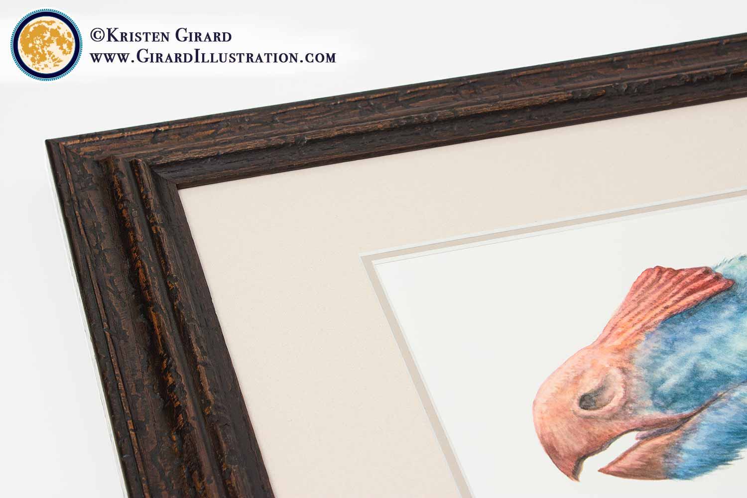 To make sure your framed dinosaur art print looks amazing for a lifetime, we took care of al the details for you.  Gorgeous frames hand crafted  with an eye for strength and beauty. Matts both set the artwork off and protect it. Glazing that has little to no glare under most lighting conditions....you deserve the best, so we only do the best.  To find out more about our artist chosen framing click here.